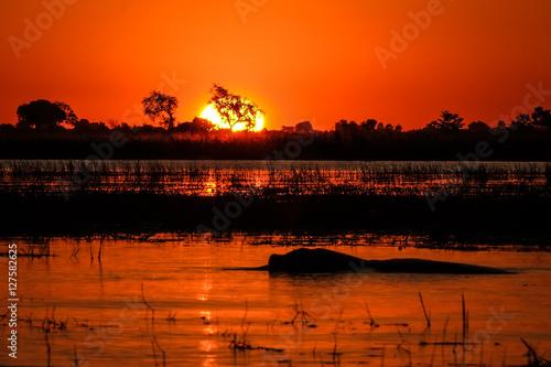 African sunset over the Chobe river in Botswana. June 2016