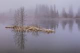 Autumn Frozen Morning on Lake in Mountains (Štrbské Pleso, High Tatra, Slovakia)