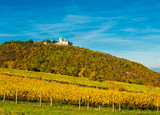Burg mit Kirche auf Berg mit Weingarten in Herbst