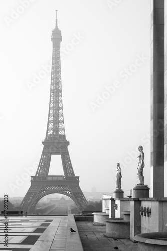 Eiffel Tower in the morning in black and white. Paris, France © Aliaksandr Kazlou