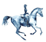 Watercolor rider and dressage galloping horse on white. England equestrian sport. Hand drawing illustration. - 127682661