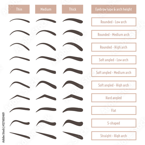 Eyebrow shapes. Various types of eyebrows. Classic type and other. Trimming. Vector illustration with different thickness of brows.  Set with captions. Makeup tips.