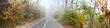 Autumn city park, alley, jogging and cycling tracks - panorama banner