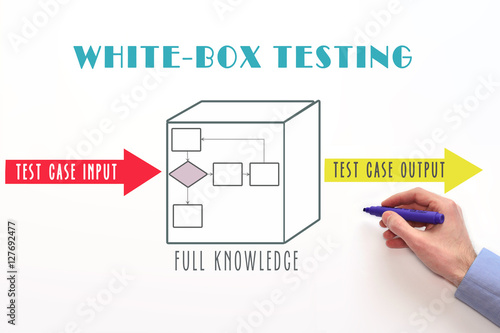 research papers on white box testing Black-box vs white-box testing: predominate testing methodologies: black-box and white-box this paper seeks to explore the pros and cons of both.