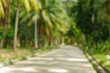 The road and coconut palm trees blurry photo background. Tropical scene defocused picture. Abstract exotic island travel blurry landscape.