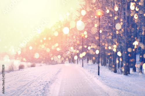 Kolorów płatki śniegu na zima parka tle. Opadów śniegu w parku.