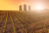 Thermal power plant at sunset, corn field