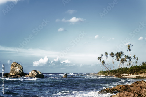 beautiful exotic ocean beach with palms, rocks and blue cloudy sky on horizon. vintage picture