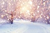 Christmas Holiday Ba...