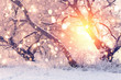 Color snowflakes on snowy background