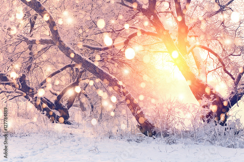 Color snowflakes on snowy background Poster