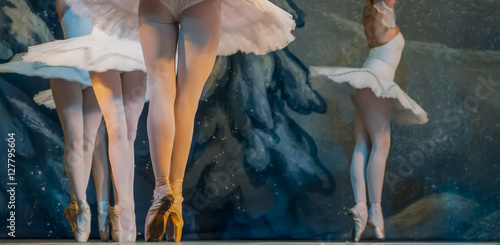 expressive ballet photo плакат