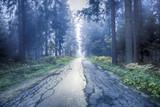 Beautiful blue foggy straight cracked asphalt forest road.
