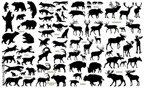 Big mammals of the northern lands vector silhouettes collection - 127828456