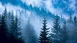 pine forest in blue fog