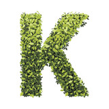 alphabet of green leaves collection_K