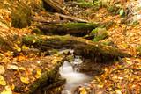 Sonbahar Renkleri ve Şelale Manzarası, Akarsu