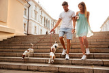 Couple walking down stairs with their dogs on a street