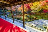 京都 圓光寺の紅葉 その1
