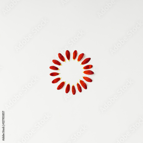 Flower petals arranged in circle. - 127955857