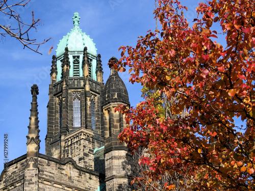 Toronto University Trinity College tower and tree 2016