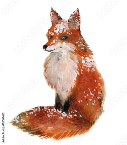 Plakat Fox in the snow isolated in a white background, watercolor