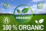 Organic 100 Zen, eco, bio farming, green  and background of an Agriculture Rice landscape