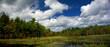New England marsh & lily pond