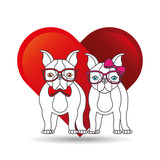 cute couple dog pet with glasses bow heart background vector illustration eps 10