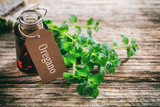 Fresh oregano twig on wooden background - 128188203