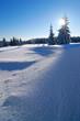 Tief verschneite unberührte Winterlandschaft, schneebedeckte Tannen, funkelnde Schneekristalle im Sonnenlicht