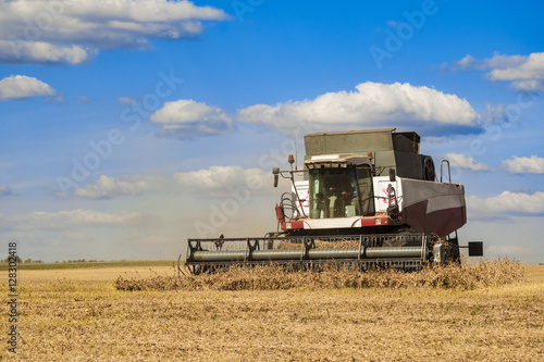 Poster Combine harvester working on the harvest in a field