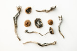 Artistic Display of Dried Magic Mushrooms on White Background