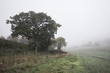 Foggy misty Autumn morning landscape in British countryside