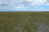 Fenced private plot of land in Tierra del Fuego.