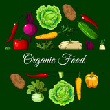 Organic vegan food vegetables poster