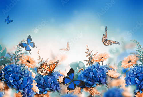 Amazing background with hydrangeas and daisies Slika na platnu