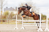 Young female rider on bay horse jump over hurdle