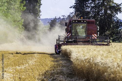 Poster moissonneuse récoltant le blé
