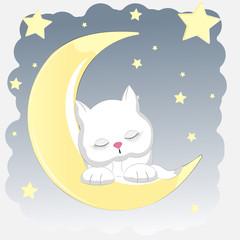 Happy cat who sleeps on the moon.
