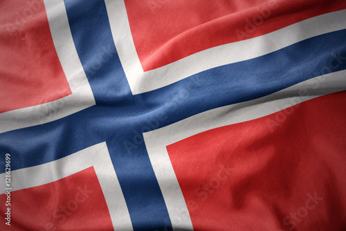 waving colorful flag of norway. Poster