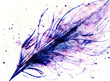 hand drawn feather and  drops on paper texture, tender varicolored violet purple tint abstract natural background
