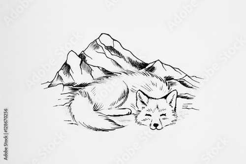 Arctic fox sleeps on a background of high mountains. - 128670256