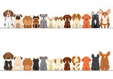 Fototapety small dogs border set, front view and rear view