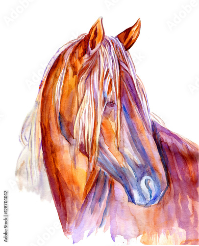 Watercolor horse hand drawn colorful illustration isolated on white background, decorative profile animal for greeting cards, invitation, scrapbook, logo, mascot or package design, page idea