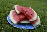 Дольки арбуза на тарелке на газоне