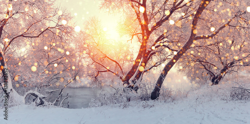 Foto op Canvas Wit Sunny Christmas morning. Sun illuminate snowflakes.