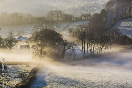 Poster Misty sunrise over the Devonshire fields with trees in view, Brentor , Devon , U