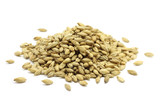 grain barley malt on a white background - 128890440