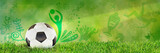 Football, Soccer, Russia, Green Background